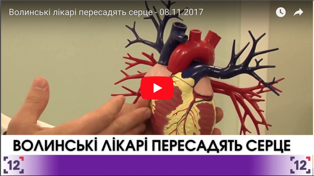 Волинські лікарі пересадять серце - 08.11.2017