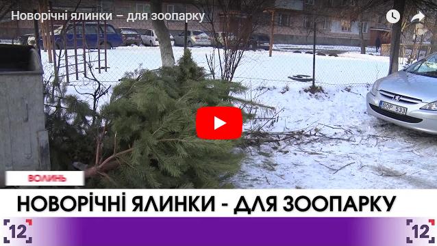 Село на Любешівщині залишиться без світла