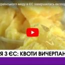 На поставку українського меду в ЄС завершилась експортна квота