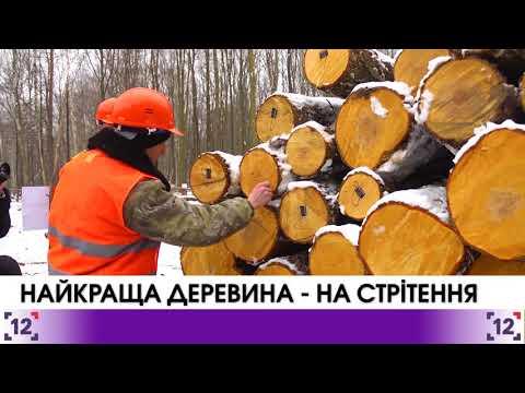 Найкраща деревина – зрізана на Стрітення