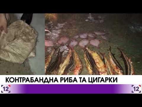 Прикордонники вилучили рідкісну рибу на мільйон гривень