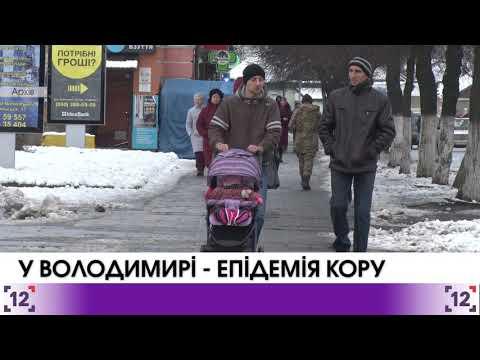 У Володимир-Волинському знову спалах кору