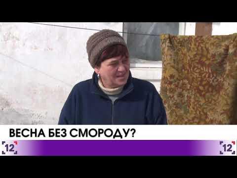Володимир-Волинський  на межі екологічної катастрофи