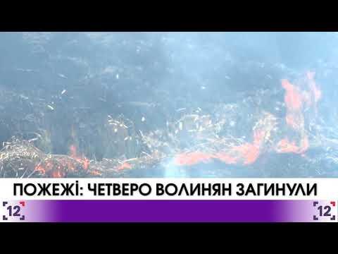 Пожежі на Волині: четверо загиблих