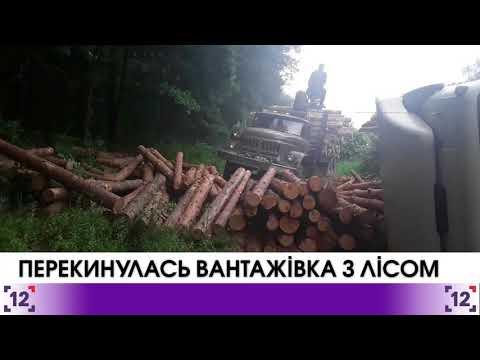 На трасі Луцьк-Київ перекинулась вантажівка з лісом