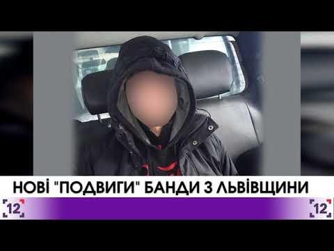 Банда з Львівщини орудує на Волині
