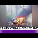 Волинь: поїхав по чорниці – згоріло авто