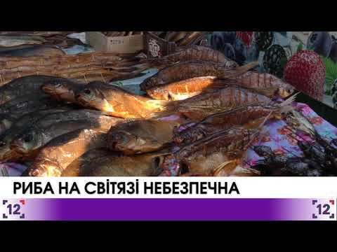 Риба на Світязі небезпечна