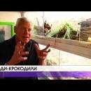 400 рептилій під одним дахом зібрав 67-річний француз Філіп Жилет