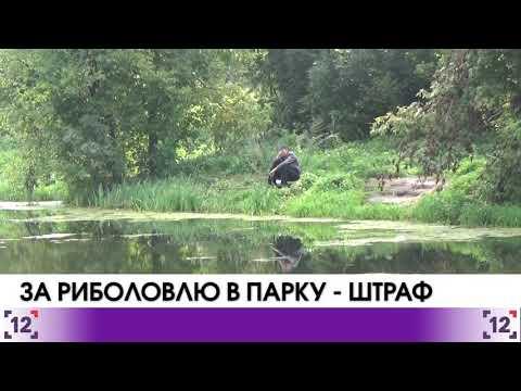 У Луцькому центральному парку штрафують за риболовлю