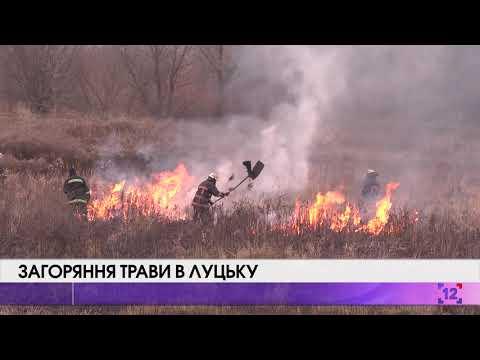 Загоряння трави в Луцьку