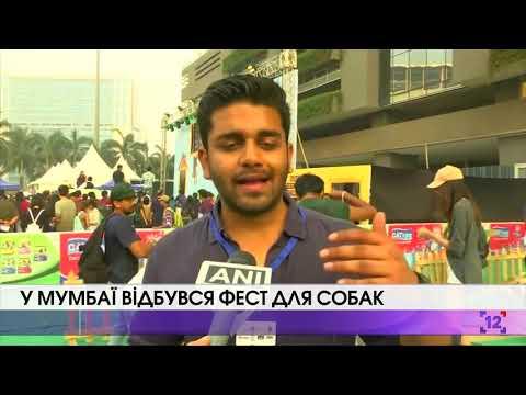 У Мумбаї відбувася фест для собак