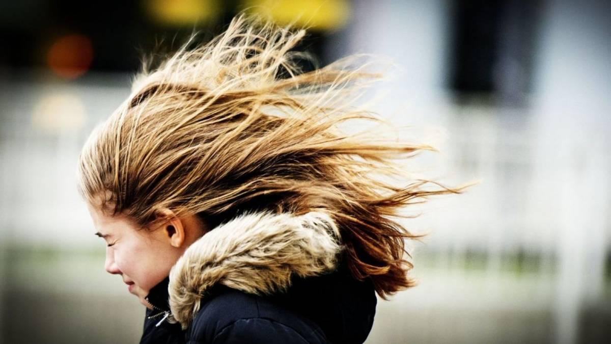 """Штормовий вітер: на Волині оголосили """"помаранчевий"""" рівень небезпеки"""