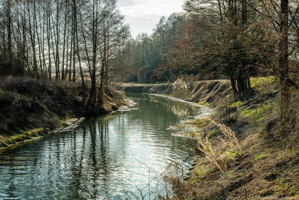 Неймовірні світлини волинської річки. ФОТО