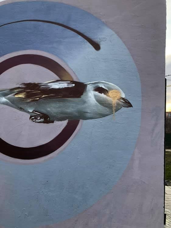 У Луцьку спаскудили графіті художника. ФОТО