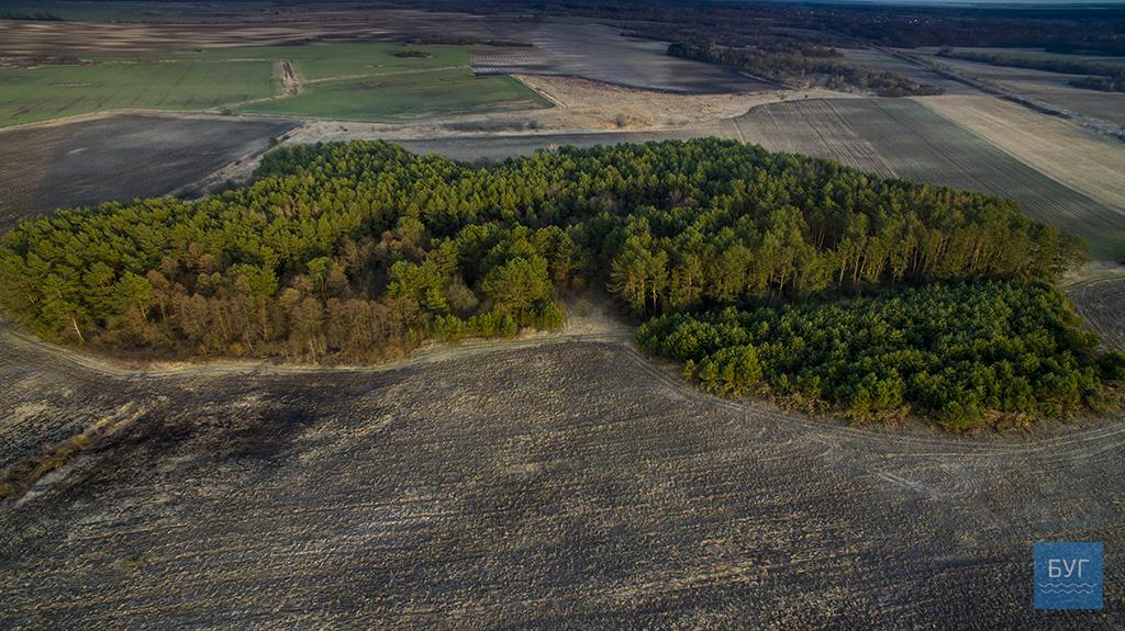 Горять поля: показали масштаби спалювання трави на Волині. ФОТО. ВІДЕО