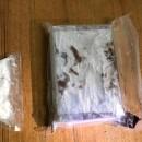 На Волинському кордоні затримали німця, який віз кілограм наркотиків