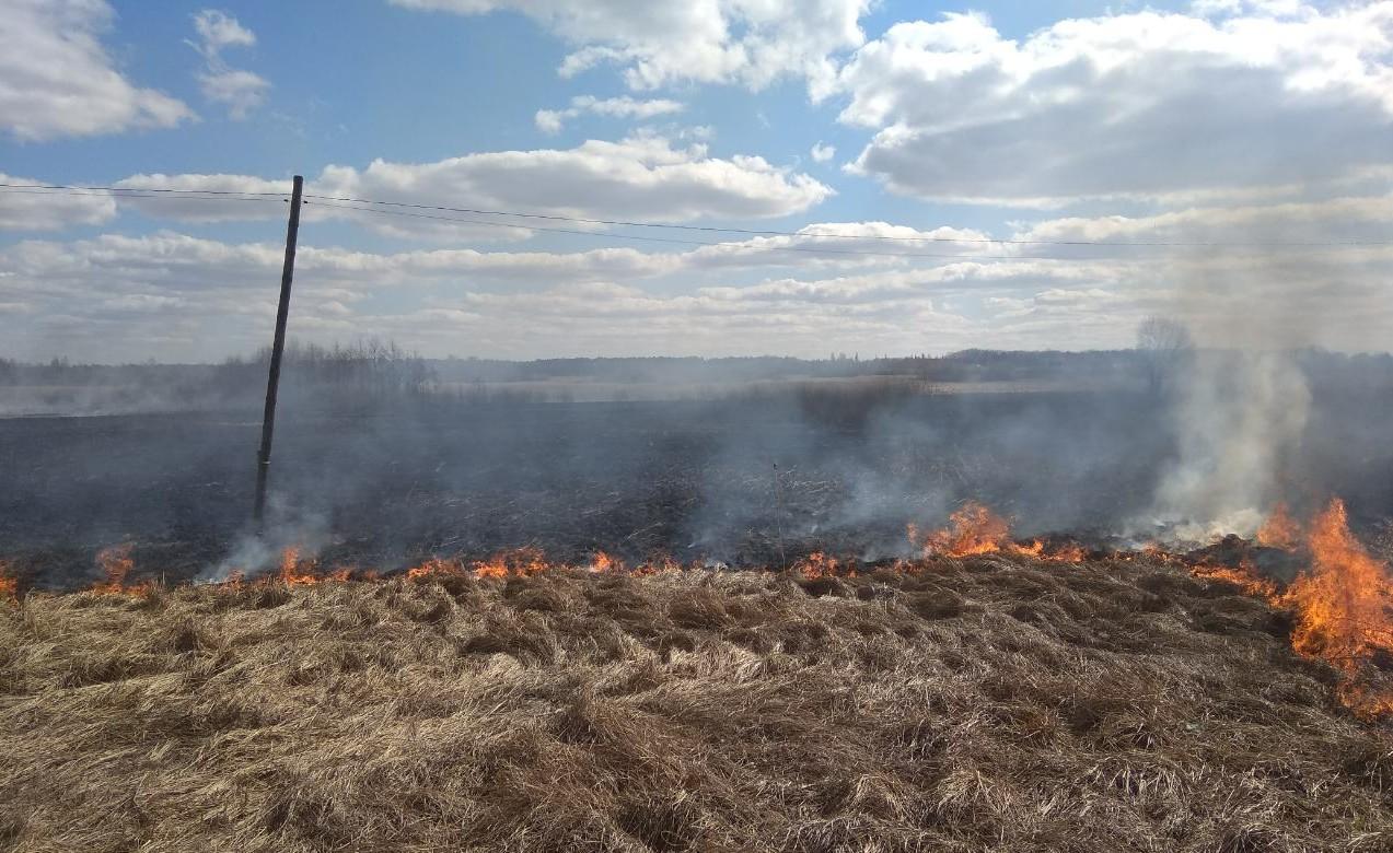 Пожежа на Волині: горіло півтора гектара сухої трави