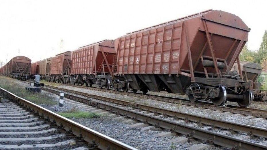 На Волині вантажний потяг переїхав жінку