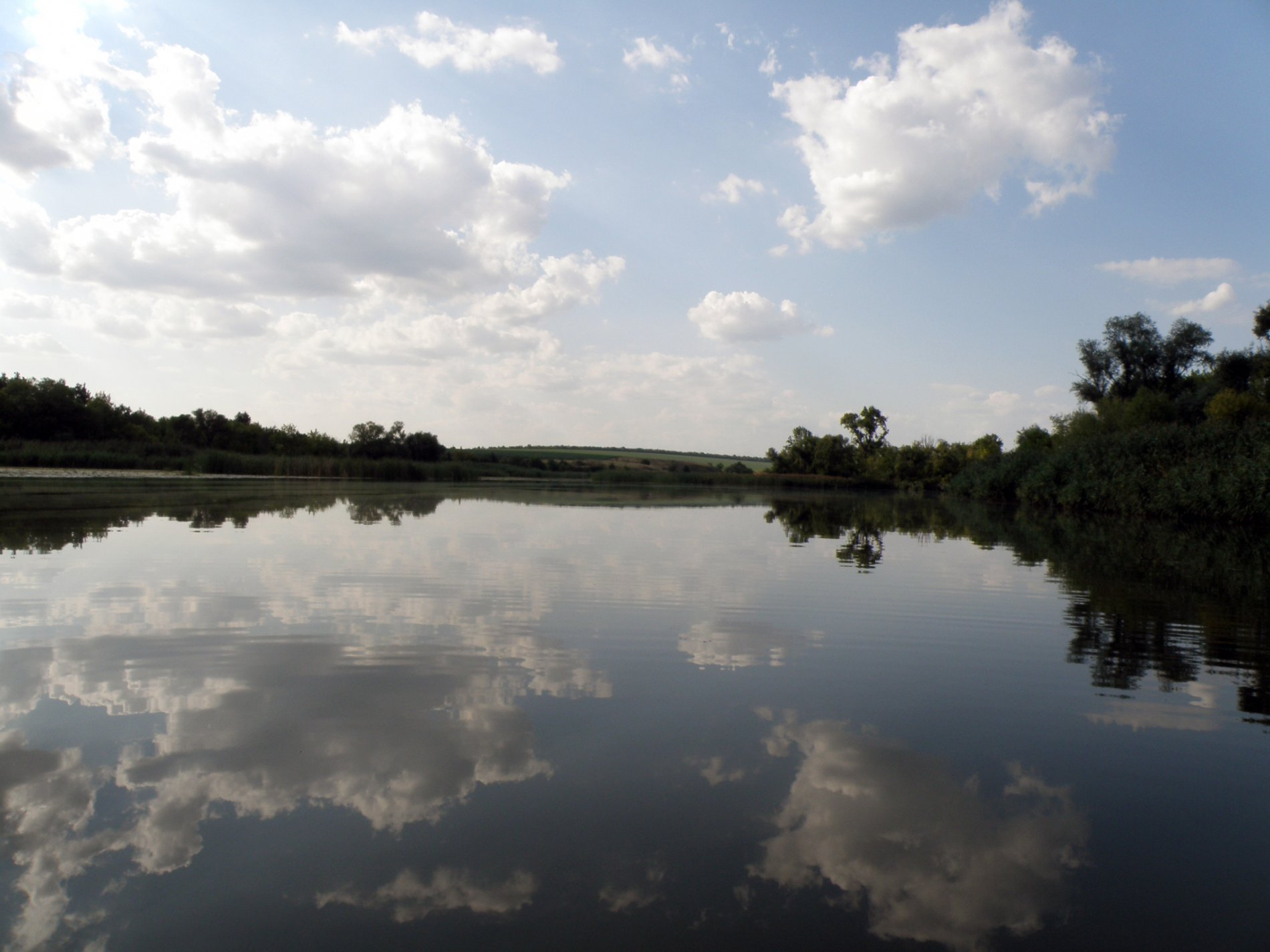 У ставку на Волині втопився чоловік