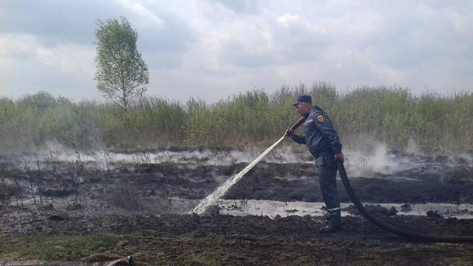 На Камінь-Каширщині горить торфовище. ФОТО