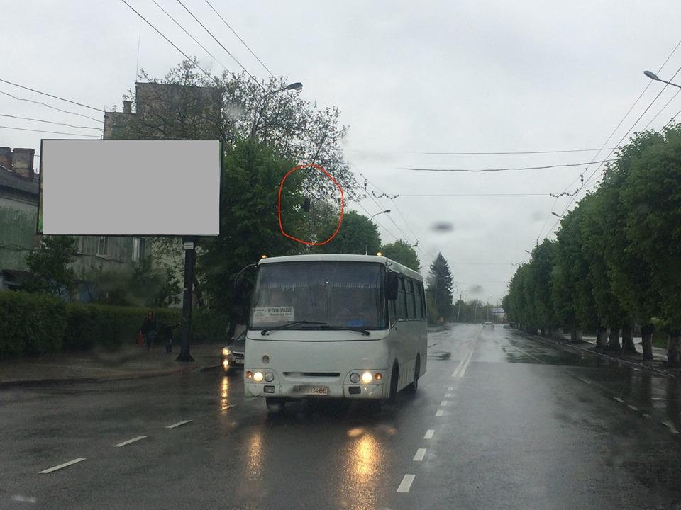 У Луцьку за зеленими деревами не видно дорожних знаків, – активіст