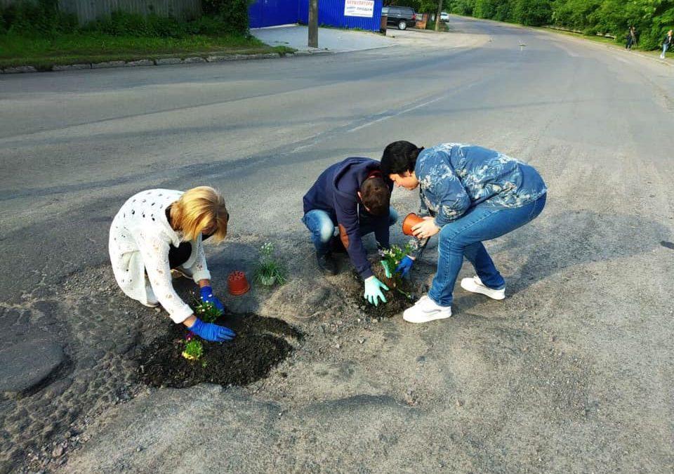 На дорогах Луцька в ями посадили квіти. ФОТО. ВІДЕО