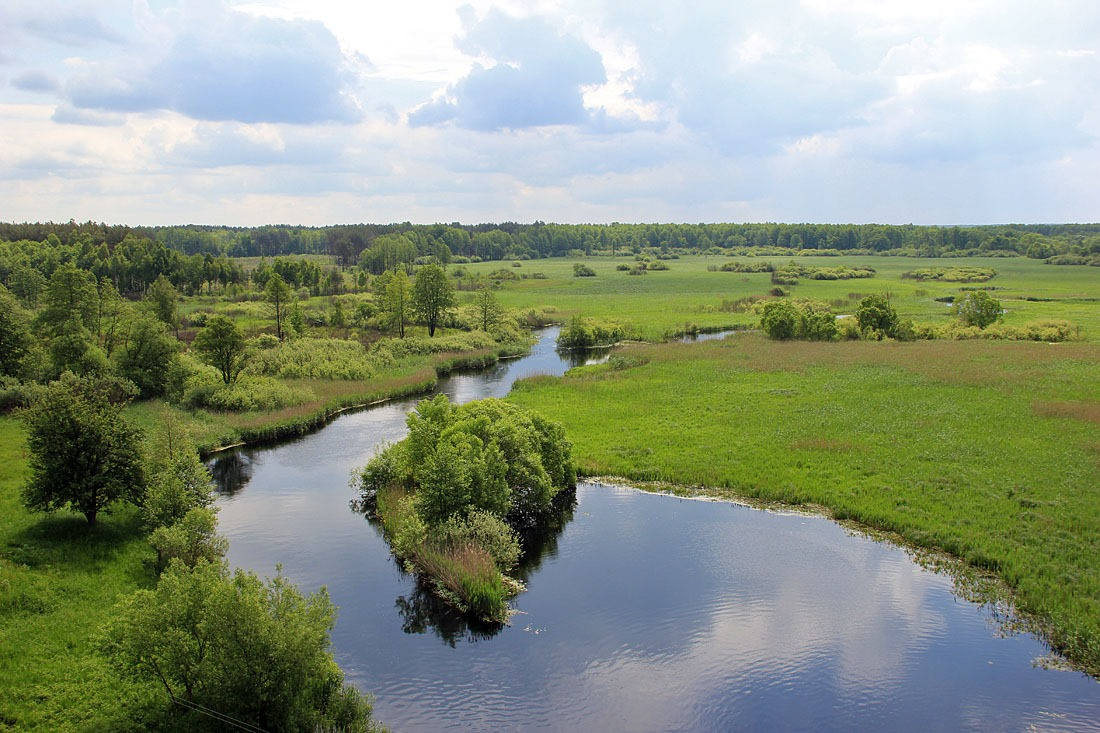 Висока вода: фантастичні світлини волинської річки. ФОТО
