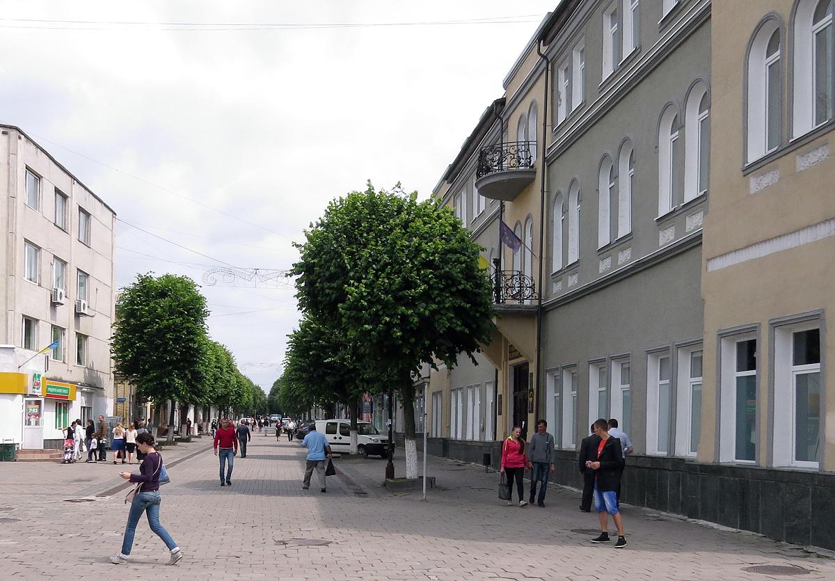 У Луцьку неповнолітні вандали розбили вікно медколеджу. ФОТО