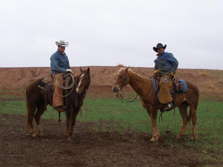 У селі на Волині влаштовують перегони на конях. ВІДЕО