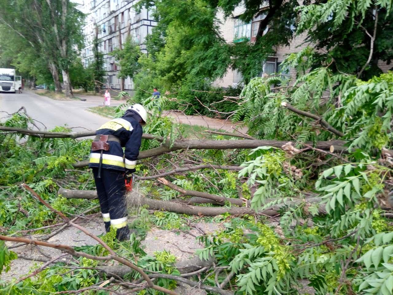 На Волині вирувала негода: сильний вітер познімав шифер та поламав дерева. ФОТО