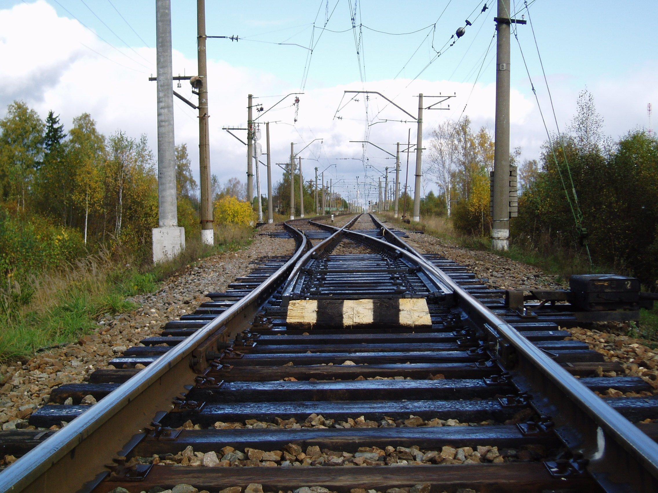 Трагедія на Волині: вантажний потяг переїхав чоловіка
