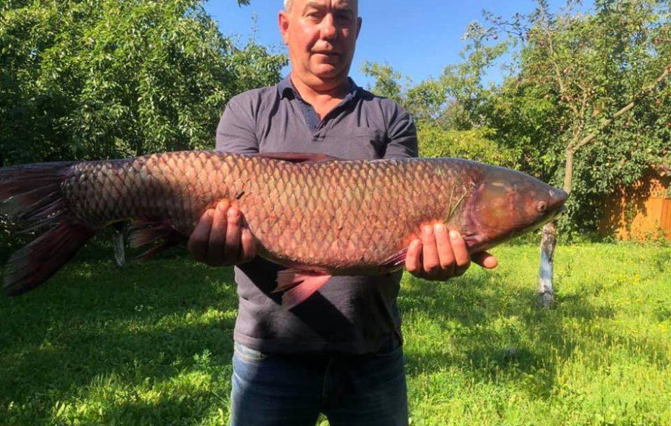 Волинянин впіймав рибину вагою понад 11 кілограмів. ФОТО