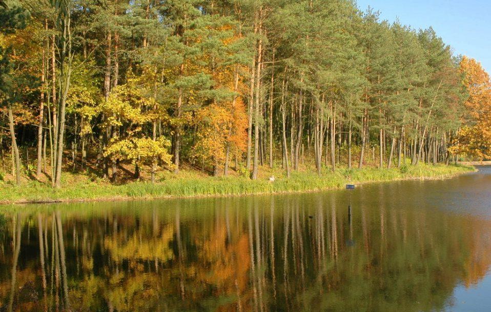 На Волині 16-річна дівчина підчепила небезпечну хворобу після купання в озері