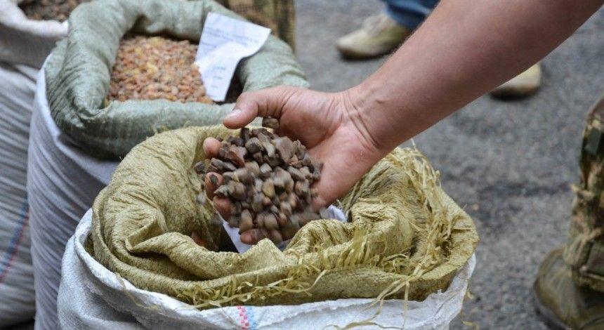 Волинянина судили за незаконний видобуток бурштину