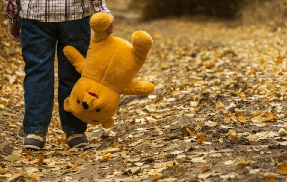 У селі під Луцьком знайшли 5-річного хлопчика, який гуляв сам