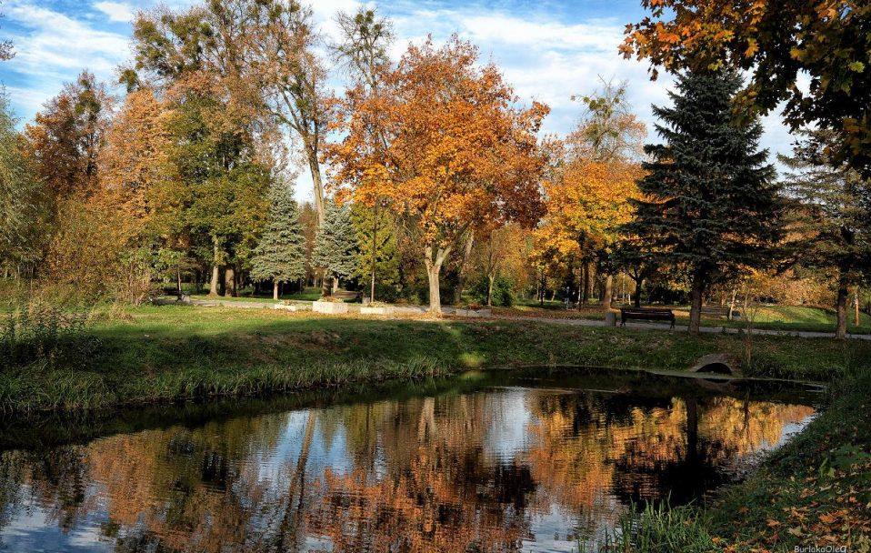 Золота осінь у парку на світлинах луцького фотографа. ФОТО