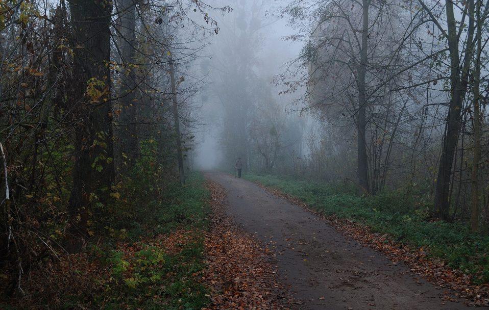 Показали атмосферні світлини Рожища у тумані. ФОТО