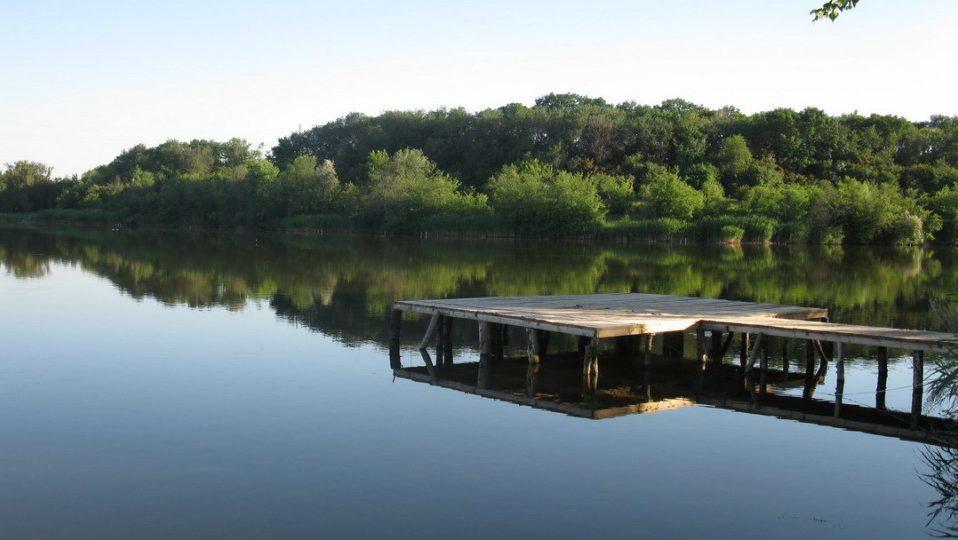 Під Луцьком підприємець захопив земельну ділянку зі ставком