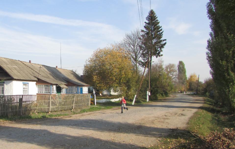 25 колоритних і маловідомих слів, які можна почути у селі на Волині
