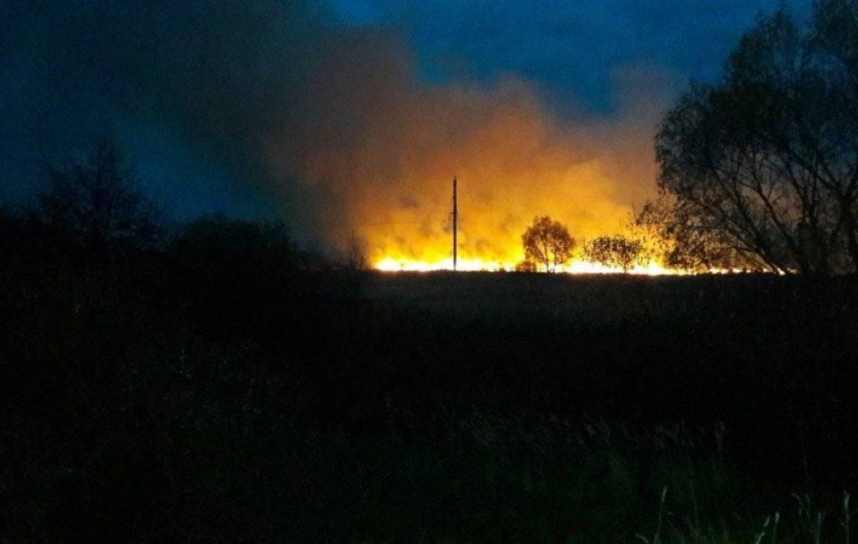 На Волині виникла масштабна пожежа біля річки. ФОТО. ВІДЕО