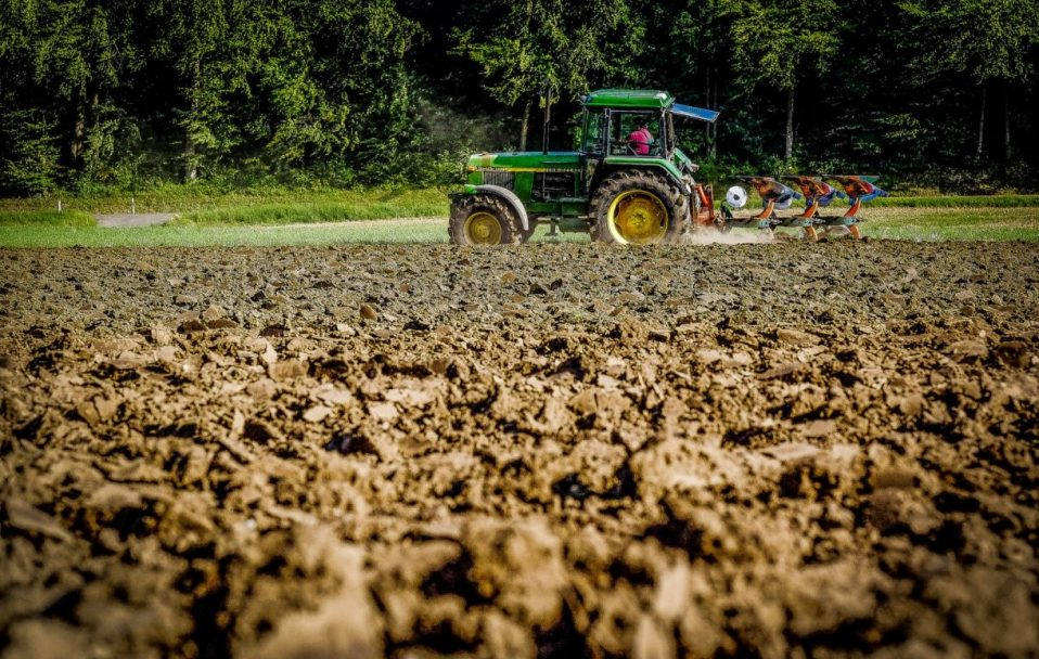 На Волині фермера змусили віддати 18 гектарів землі. Її вартість – майже 23 000 000 гривень