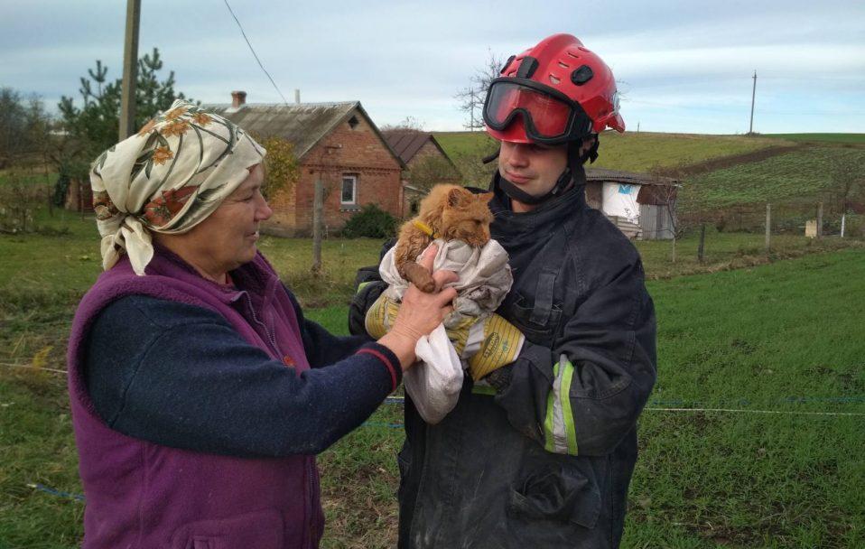 Під Луцьком рятувальник спускався у 10-метрову криницю, аби врятувати кота