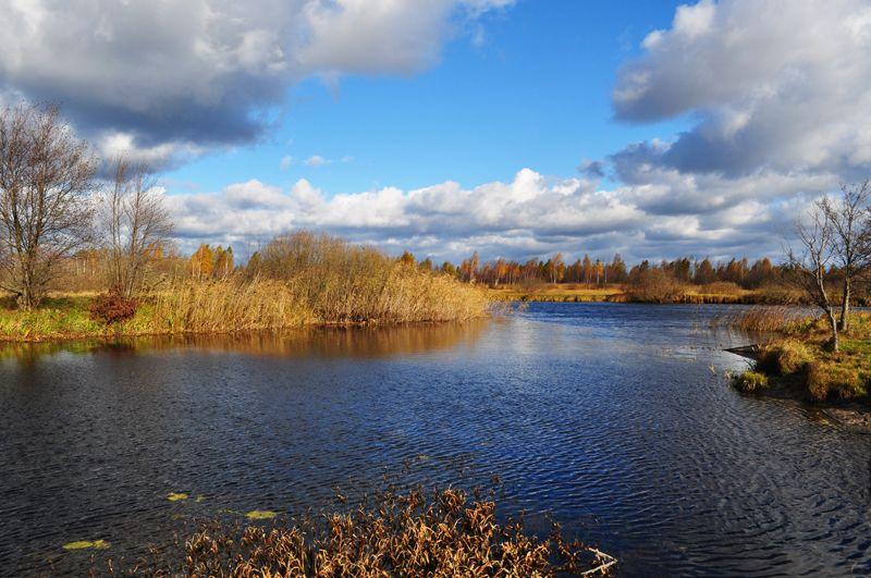 Не тільки Світязь: на Волині обміліла найбільша річка