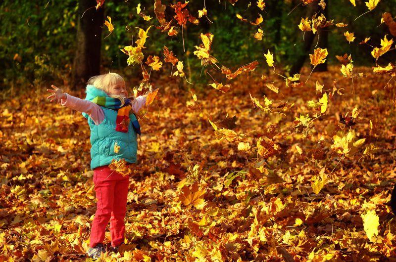 Тепло повертається: українцям обіцяють +20 у листопаді