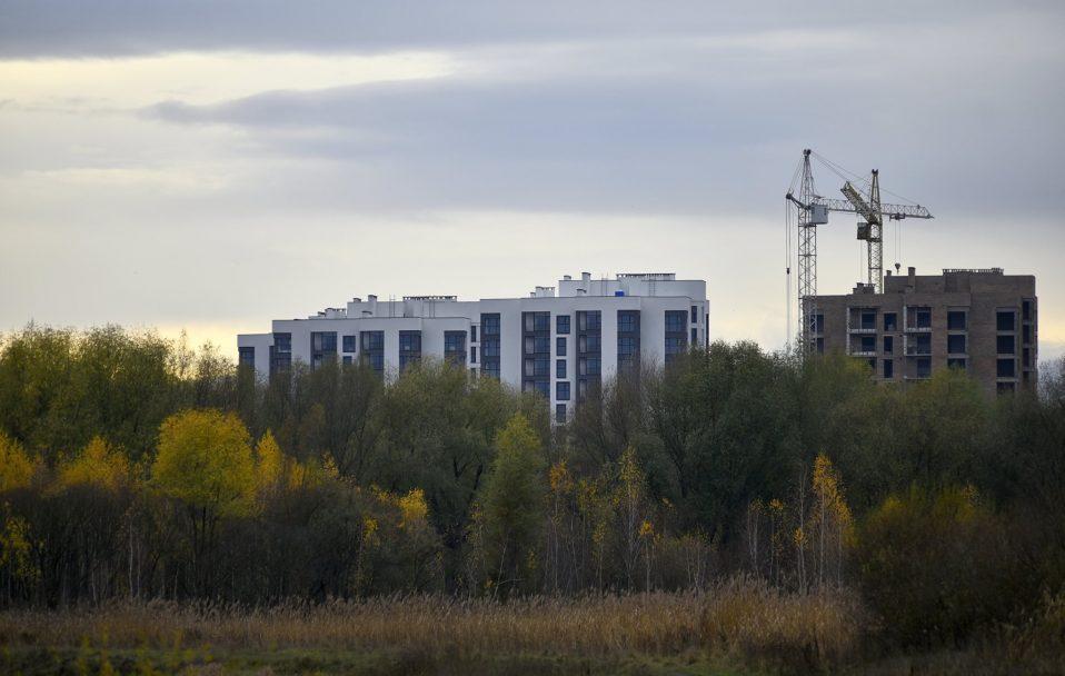 Паралельний світ:  осінь на Гнідавському болоті у Луцьку. ФОТО