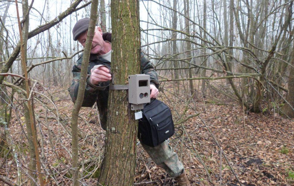 На Волині в національному парку встановили фотопастки. ФОТО