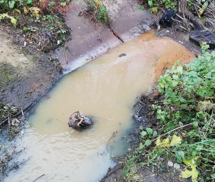 Гнідавський завод забруднює річку у Луцьку, – екологи