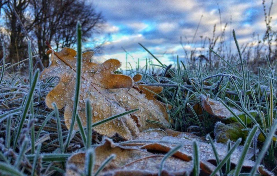 Якою буде погода у п'ятницю, 6 грудня, – прогноз синоптика