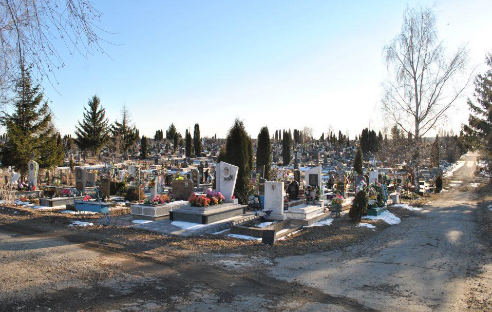 Чоловіки крали кущі з могил і перепродували у Луцьку